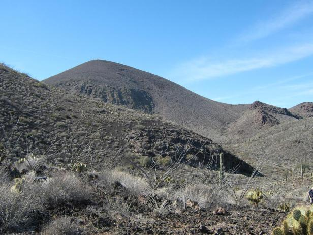 pinacate10